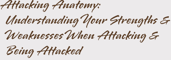 Attacking Anatomy: Understanding Your Strengths & Weaknesses When Attacking & Being Attacked